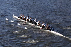 UC San Diego races in the Head of Charles Regatta Men`s College Eights Stock Images