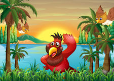 Uccelli alla riva vicino ai cocchi royalty illustrazione gratis