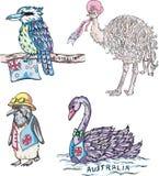 Uccelli australiani Immagine Stock Libera da Diritti