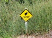 Uccelli che attraversano segno Fotografia Stock Libera da Diritti