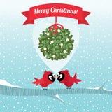 Uccelli che baciano nell'ambito di un ramo del Natale del vischio Immagine Stock