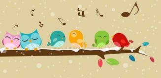 Uccelli che cantano sul ramo Fotografia Stock Libera da Diritti