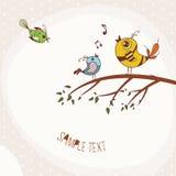 Uccelli che si siedono su un ramo di albero Fotografia Stock