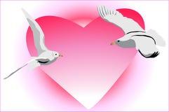 Uccelli che volano verso a vicenda in un impulso della l Fotografia Stock