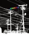 Uccelli colorati sulle linee elettriche Immagine Stock Libera da Diritti