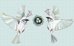 Uccelli con i semi che volano vicino al nido con le uova Fotografia Stock