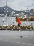 Uccelli d'alimentazione della donna Fotografie Stock