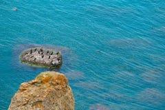 Uccelli dei gabbiani sull'rocce nel mare con acqua calma Fondo variopinto, spazio della copia immagini stock