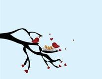 Uccelli del biglietto di S. Valentino Fotografia Stock Libera da Diritti