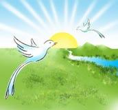 Uccelli del paradiso Immagini Stock Libere da Diritti