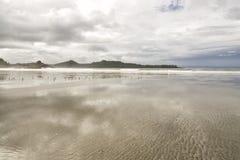 Uccelli del piovanello sulla spiaggia di Chesterman Fotografie Stock