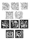 Uccelli dell'airone e della cicogna nei modelli celtici Fotografia Stock