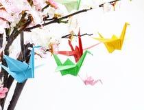Uccelli di carta variopinti di origami sui rami di fioritura della ciliegia Fotografia Stock Libera da Diritti
