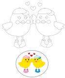 Uccelli di coloritura Fotografia Stock Libera da Diritti