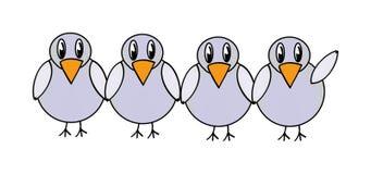 Uccelli di gray di vettore Fotografie Stock