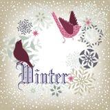 Uccelli di inverno Fotografie Stock Libere da Diritti
