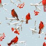 Uccelli di inverno con Rowan Berries Retro Background - modello senza cuciture Immagini Stock