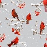 Uccelli di inverno con Rowan Berries Retro Background - modello senza cuciture Immagine Stock