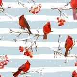 Uccelli di inverno con Rowan Berries Retro Background - modello senza cuciture Fotografia Stock