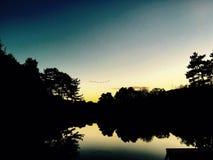 Uccelli di tramonto Fotografie Stock Libere da Diritti