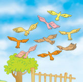 Uccelli di volo Royalty Illustrazione gratis