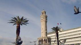 Uccelli di volo del movimento lento intorno alla torre di orologio di Smirne video d archivio