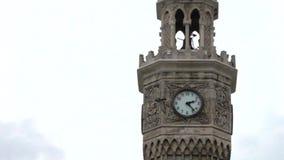Uccelli di volo intorno alla torre di orologio di Smirne archivi video