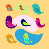Uccelli differenti Fotografia Stock Libera da Diritti