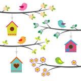Uccelli e birdhouses illustrazione vettoriale