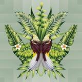 Uccelli e foglie tropicali Fotografie Stock