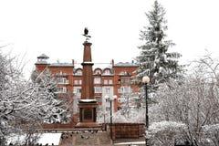 Uccelli e monumento siberiani di inverno fotografia stock libera da diritti