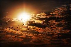 Uccelli e nubi Immagine Stock Libera da Diritti