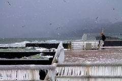 Uccelli e tempesta sopra una banchina su Mar Nero immagine stock