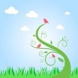 Uccelli ed albero Fotografia Stock Libera da Diritti