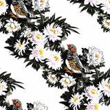 Uccelli esotici selvaggi dell'acquerello sul modello senza cuciture dei fiori su fondo bianco Fotografia Stock Libera da Diritti