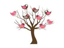 Uccelli felici Fotografie Stock Libere da Diritti