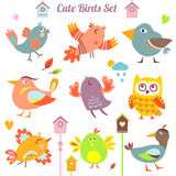 Uccelli impostati Fotografia Stock
