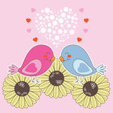 Uccelli nell'amore Immagini Stock
