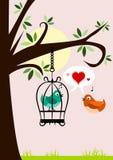 Uccelli nell'amore Fotografia Stock