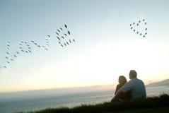 Uccelli nell'amore di incanto del cielo Fotografia Stock Libera da Diritti
