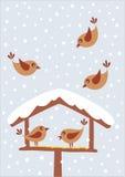 Uccelli nell'inverno Fotografia Stock