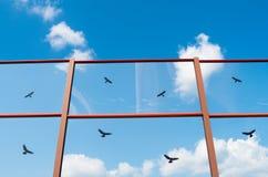 Uccelli neri dipinti sul vetro Immagine Stock