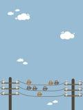 Uccelli su un collegare Fotografie Stock