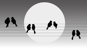 Uccelli sul collegare Fotografia Stock