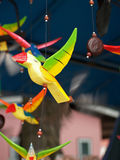 Uccelli in tensione Immagini Stock