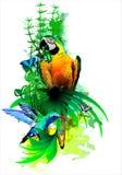 Uccelli tropicali luminosi su un fondo bianco illustrazione di stock