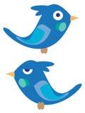 Uccellini blu Fotografia Stock Libera da Diritti