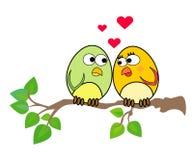 Uccellini nell'amore Immagine Stock Libera da Diritti