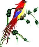 Uccellino Immagine Stock Libera da Diritti