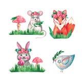 Uccellino animale del topo del coniglio di Fox dell'insieme dell'acquerello sui fiori botanici isolati bianchi del ramo dell'erba illustrazione vettoriale